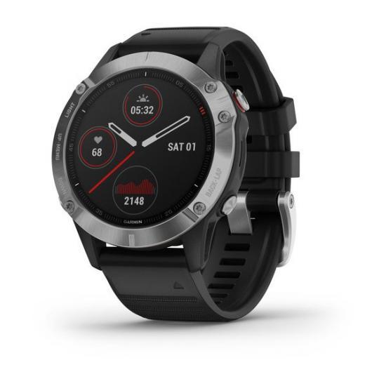Часы Garmin FENIX 6 серебристые с черным ремешком (010-02158-00)